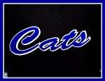 Wildcat Baseball